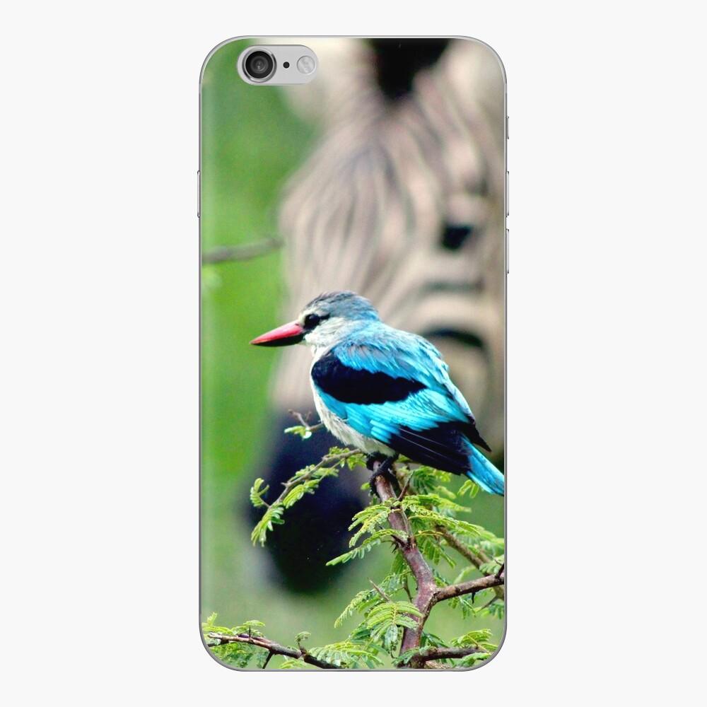 Kingfisher and Zebra iphone skin