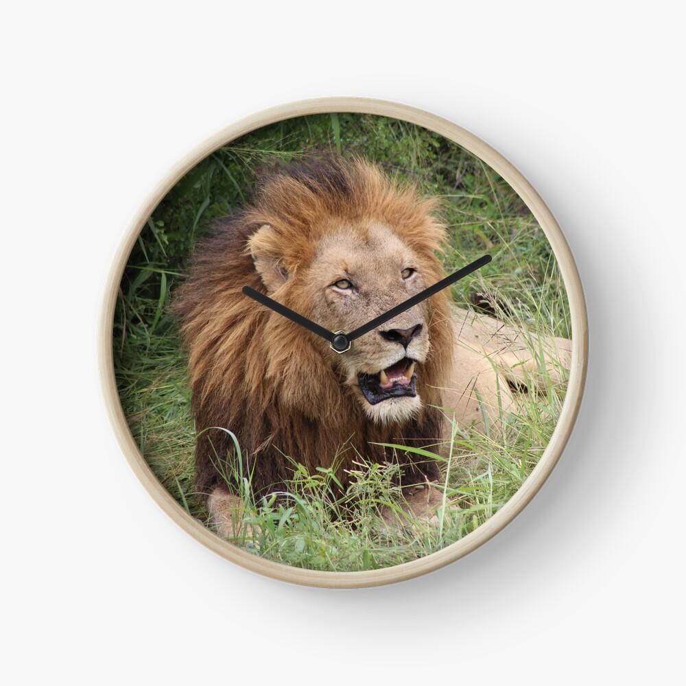African Lion clock