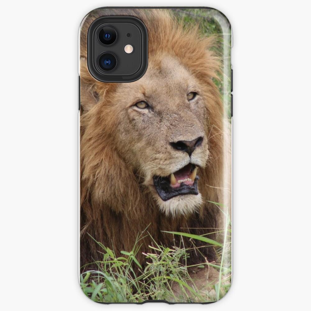 African Lion iphone tough case